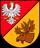 Białostocki